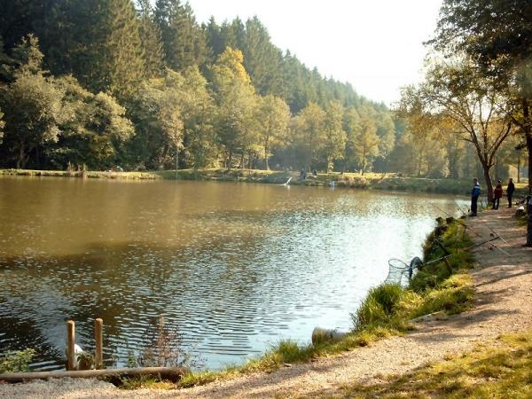 Angelpark Barweiler Mühle - Teich 1